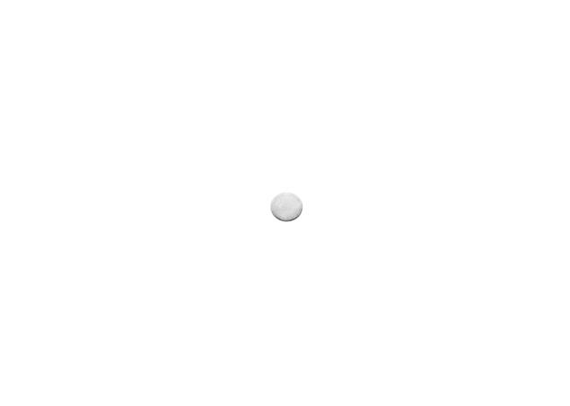 Round Stamping-Thickness 0.25mm