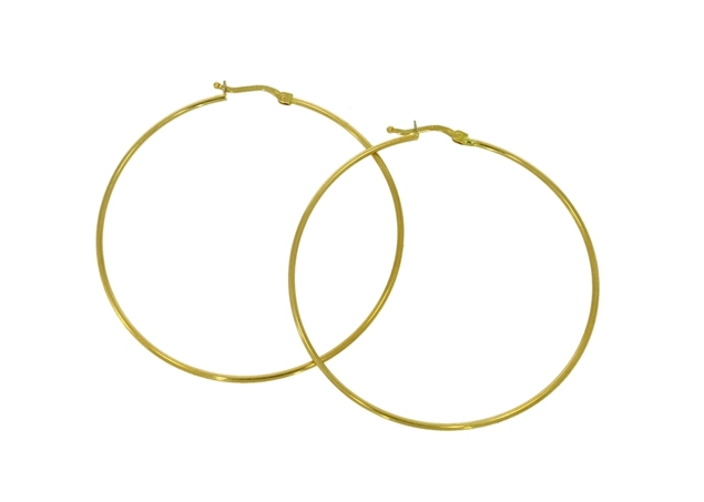 Picture of Hoop Earrings